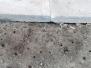 Čmeláčí hnízda v MŠ